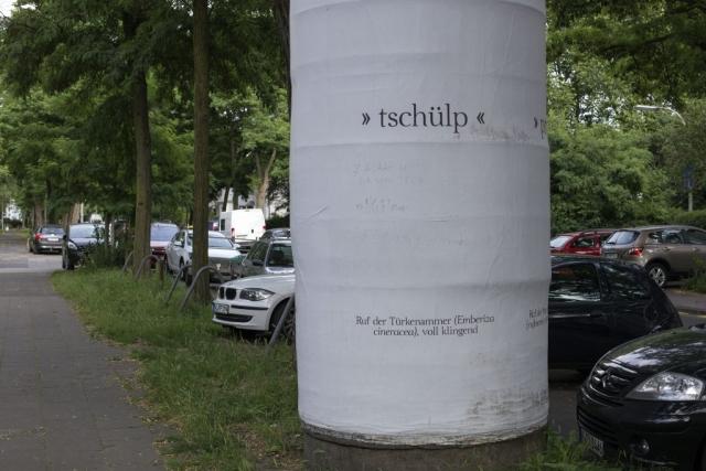 Köln (2016)